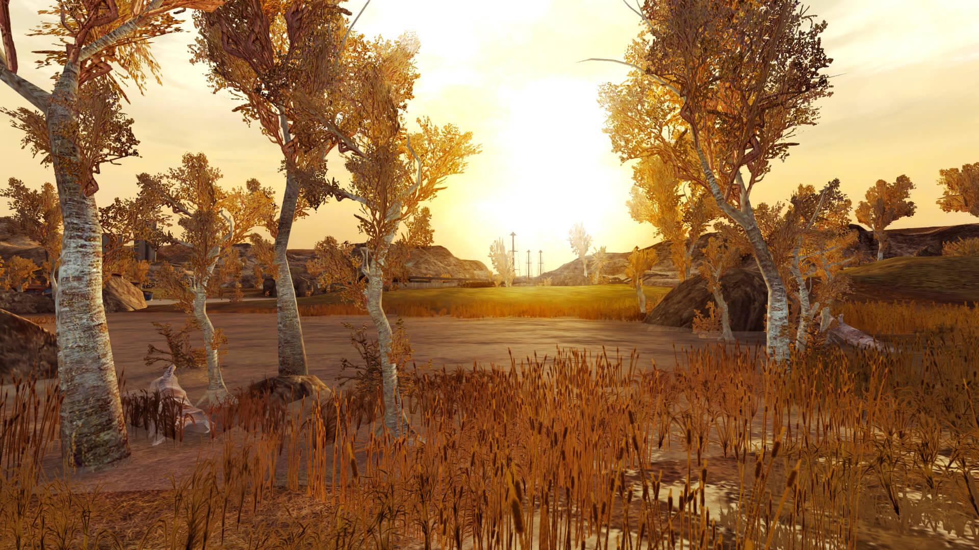 NWM Zatar Wetlands