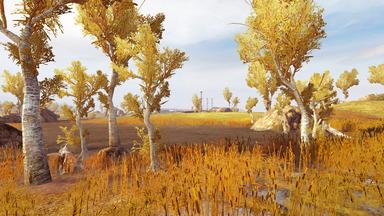 Zatar Wetlands